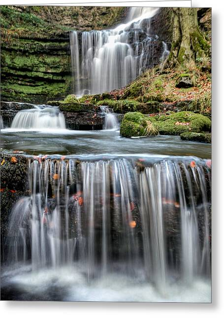 Scaleber Force Steps Greeting Card by Chris Frost