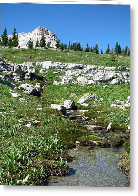 Scapegoat Greeting Cards - Scapegoat Amphitheater and Spring Greeting Card by Pam Little