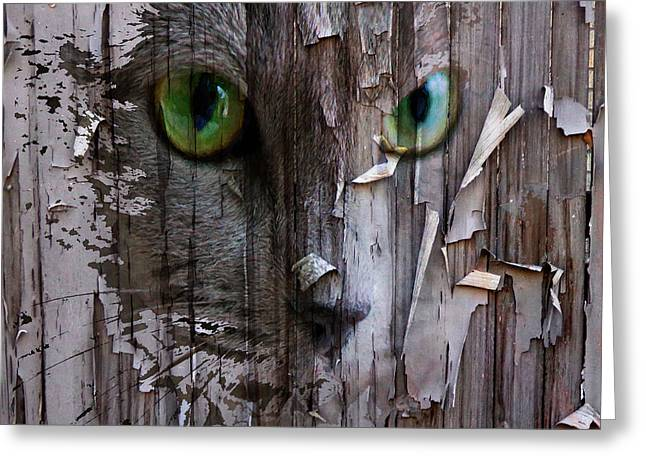 Kitty Digital Art Greeting Cards - Scaring Fence Greeting Card by Yury Malkov