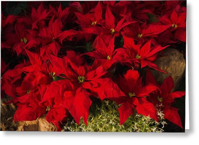 Festivities Digital Art Greeting Cards - Scarlet Christmas Poinsettias Impressions Greeting Card by Georgia Mizuleva