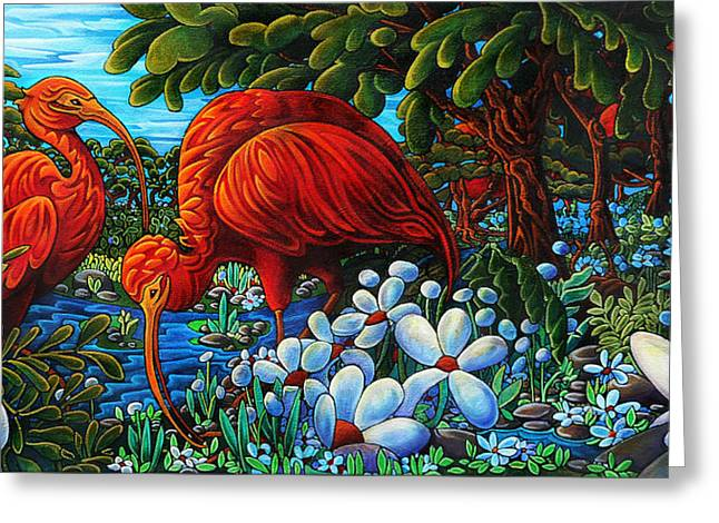 Thome Greeting Cards - Scarlet Ibis Greeting Card by Transcend Designs