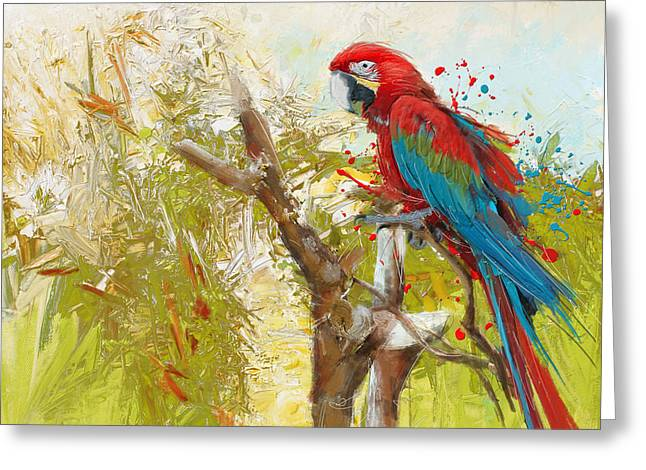 Parakeet Paintings Greeting Cards - Scarlet Macaw Greeting Card by Catf