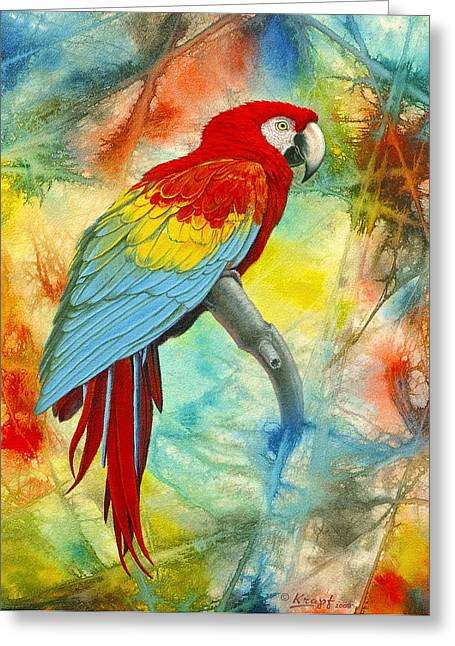 Macaw Greeting Cards - Scarlet Macaw in Abstract Greeting Card by Paul Krapf