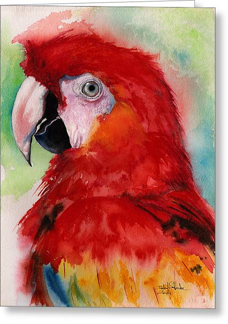 Macaw Art Print Greeting Cards - Scarlet Macaw Greeting Card by Isabel Salvador