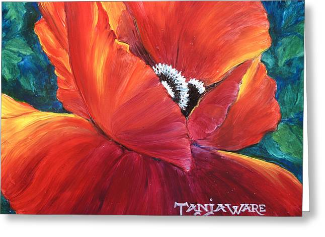 Close Focus Floral Greeting Cards - Scarlet Poppy Greeting Card by Tanja Ware