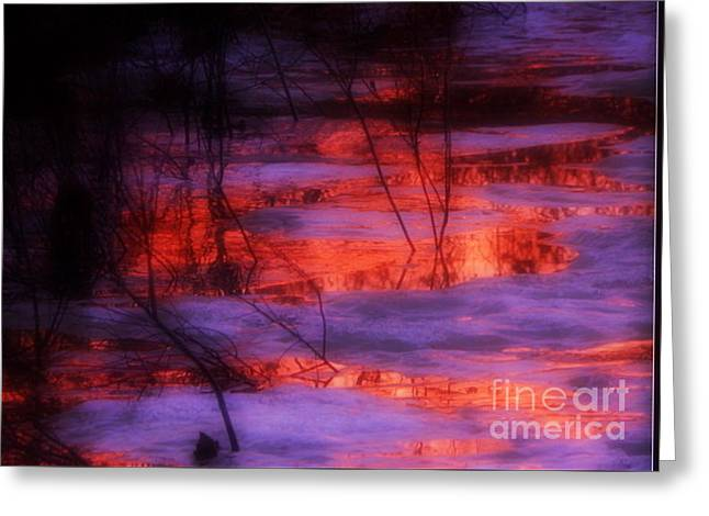 Annapolis Valley Greeting Cards - Scarlet ribbons Greeting Card by Karen Cook