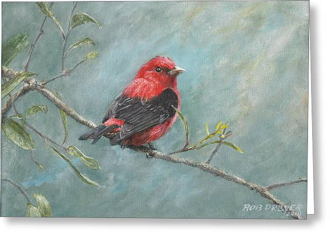 Audubon Greeting Cards - Scarlet Tanager Greeting Card by Rob Dreyer AFC