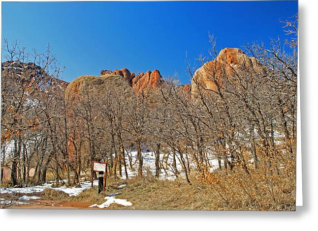 Bobcats Photographs Greeting Cards - Scene at Roxborough Park Greeting Card by Richard Risely