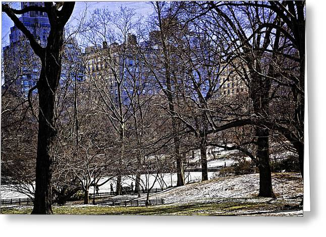 Scene from Central Park - NYC Greeting Card by Madeline Ellis