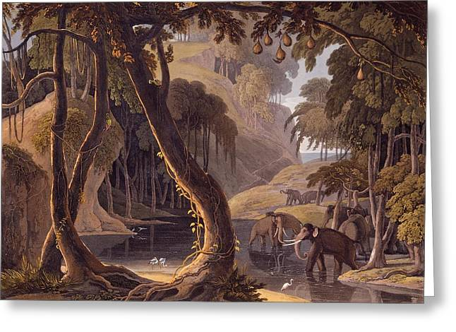 Heron Drawings Greeting Cards - Scene In Sitsikamma - Elephants Greeting Card by Samuel Daniell