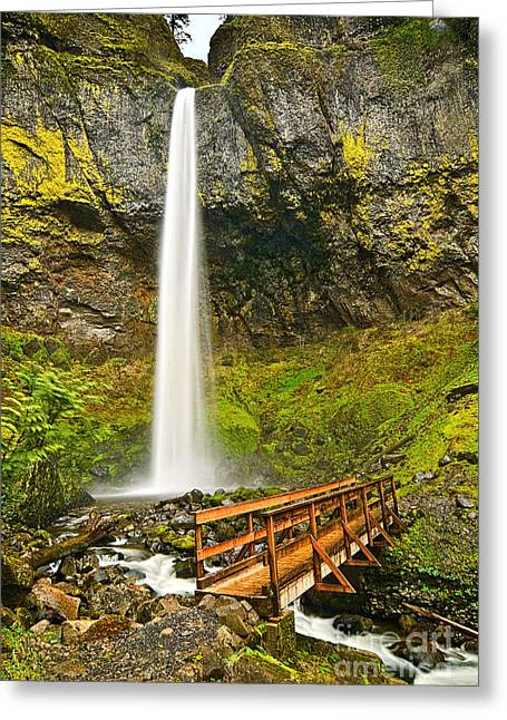 Plunge Greeting Cards - Scenic Elowah Falls in the Columbia River Gorge in Oregon Greeting Card by Jamie Pham