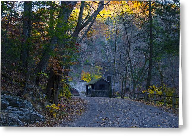 Wissahickon Creek Greeting Cards - Scenic Forbidden Drive in Philadelphia Greeting Card by Bill Cannon