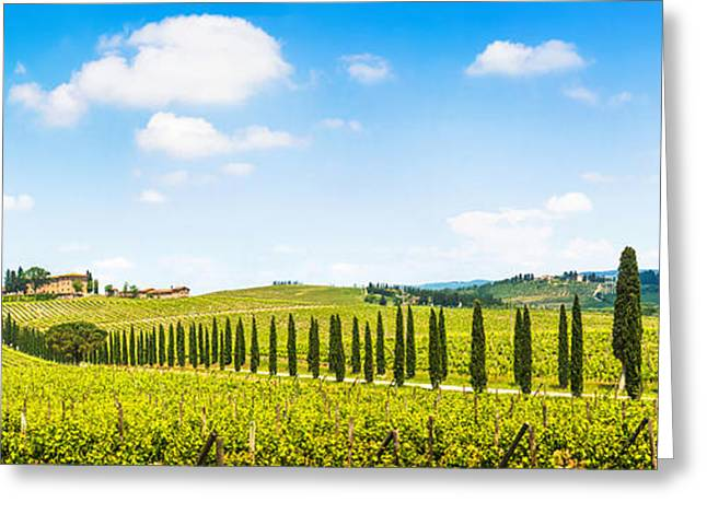 Grape Vineyard Greeting Cards - Scenic Italy Greeting Card by JR Photography