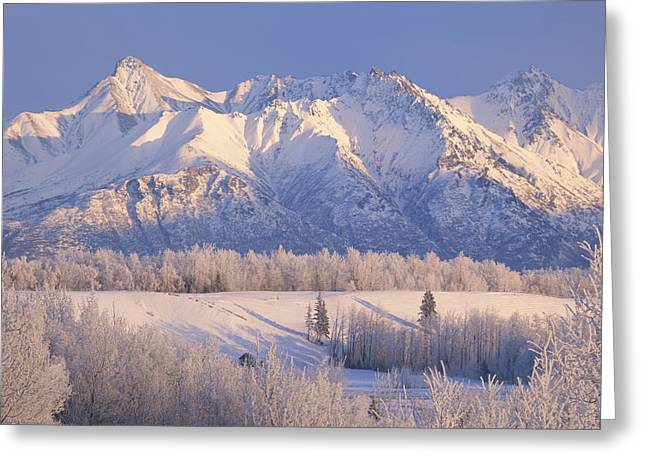 Wasilla Greeting Cards - Scenic Landscape Of Byers Peak And Greeting Card by Michael Criss