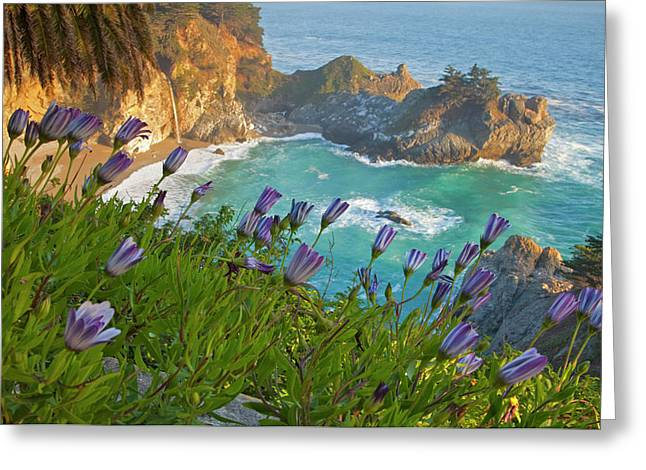 Scenic Mcway Falls Tumbles Greeting Card by Chuck Haney