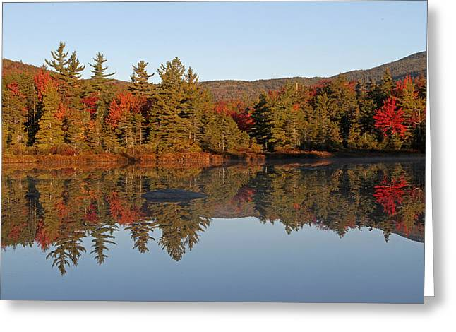 Forest Picture Greeting Cards - Scenic New England Greeting Card by Juergen Roth