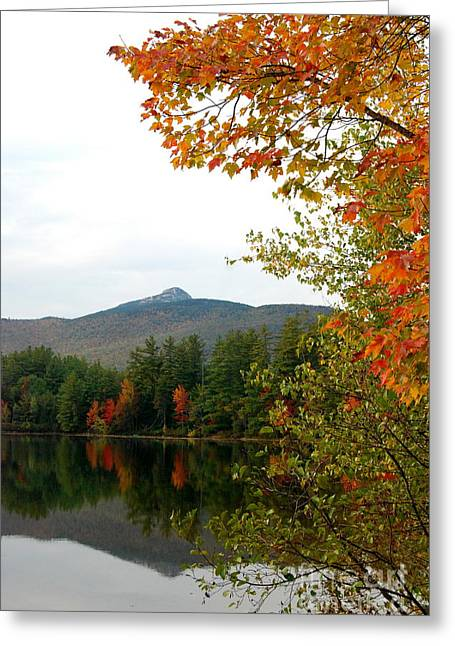 Fly Fishing Art On Canvas Greeting Cards - Scenic New Hampshire Lake Greeting Card by Eunice Miller