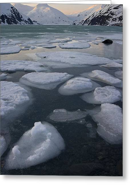 Scenic Of Ice In Portage Lake At Greeting Card by Hal Gage