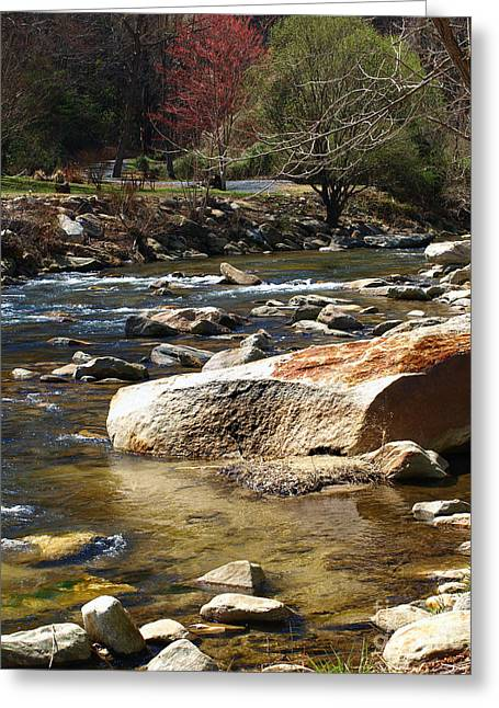 Chimney Rock North Carolina Greeting Cards - Scenic River Greeting Card by Candy Frangella