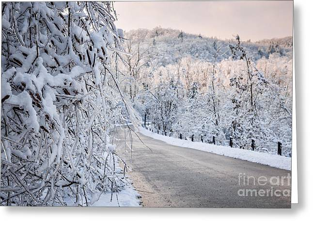 Pink Road Greeting Cards - Scenic road in winter forest Greeting Card by Elena Elisseeva