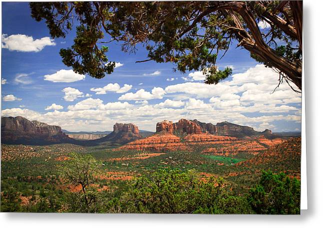 Cathedral Rock Greeting Cards - Scenic Sedona Greeting Card by Barbara Manis