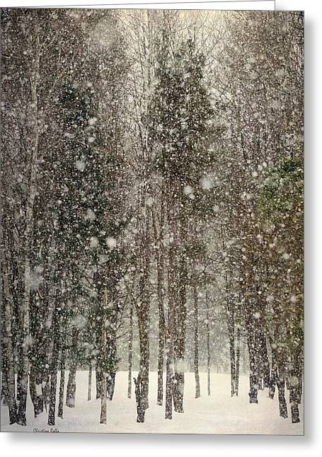 Christmas Greeting Photographs Greeting Cards - Scenic Snowfall Greeting Card by Christina Rollo