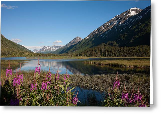 Seward Greeting Cards - Scenic view from the Seward Highway in the Chugach National Fore Greeting Card by Carol M Highsmith