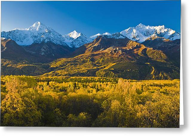 Photos Of Autumn Greeting Cards - Scenic View Of Chugach Mountains Greeting Card by Michael DeYoung