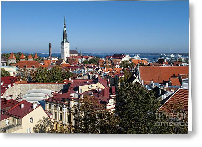Tallinn Greeting Cards - Scenic View Of Colorful Rooftops Greeting Card by Bill Bachmann
