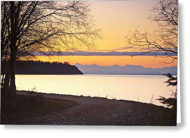 Tony Knowles Coastal Trail Greeting Cards - Scenic View Of Cook Inlet Along The Greeting Card by Kevin Smith