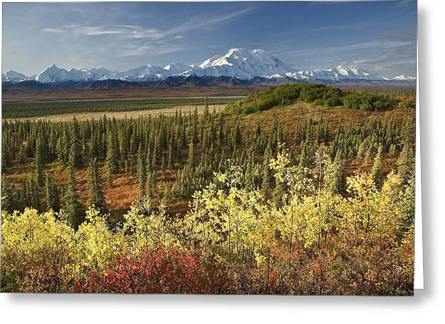 Northside Greeting Cards - Scenic View Of Mt. Mckinley And The Greeting Card by John Delapp