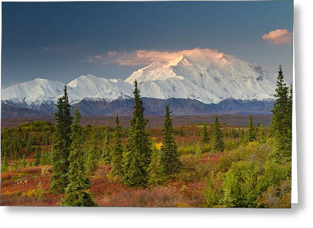 Northside Greeting Cards - Scenic View Of Mt. Mckinley At Sunrise Greeting Card by Lynn Wegener
