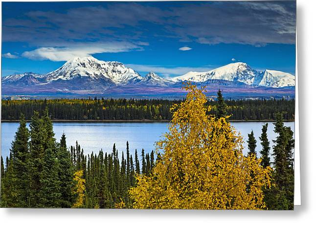 Recently Sold -  - Willow Lake Greeting Cards - Scenic View Of Mt. Sanford L And Mt Greeting Card by Sunny Awazuhara- Reed