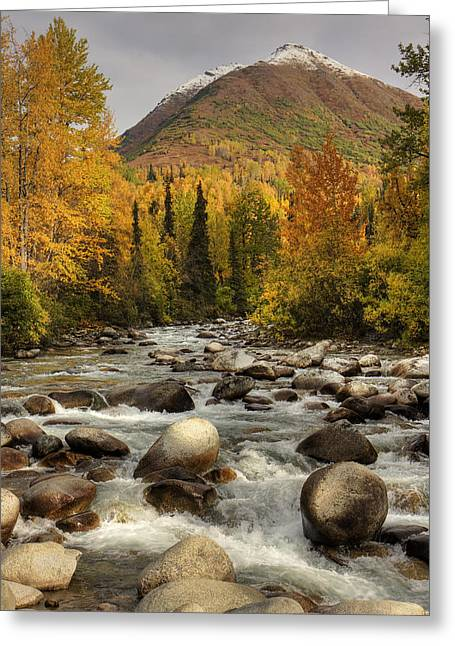 Hdr Landscape Greeting Cards - Scenic View Of The Little Susitna River Greeting Card by Michael Criss