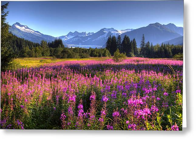 Hdr Landscape Greeting Cards - Scenic View Of The Mendenhall Glacier Greeting Card by Michael Criss