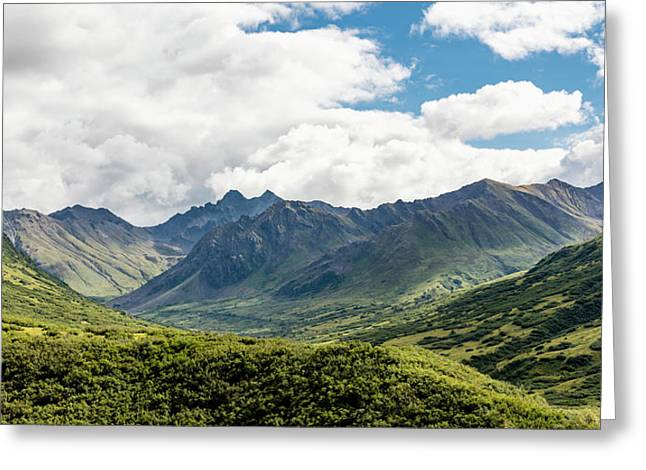 Scenic View Of The Talkeetna Mounts Greeting Card by Ray Bulson