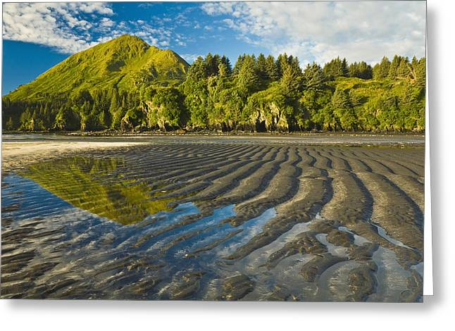 Kodiak Greeting Cards - Scenic View Of Tidal Flats At Low Tide Greeting Card by Michael DeYoung