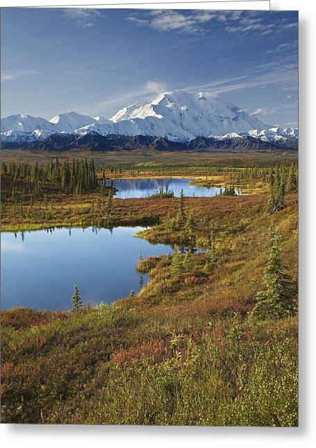 Northside Greeting Cards - Scenic View Of Tundra Ponds And Fall Greeting Card by John Delapp