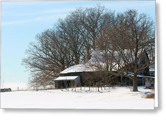 Barn Yard Greeting Cards - Scenic Wayne County Ohio Greeting Card by R A W M