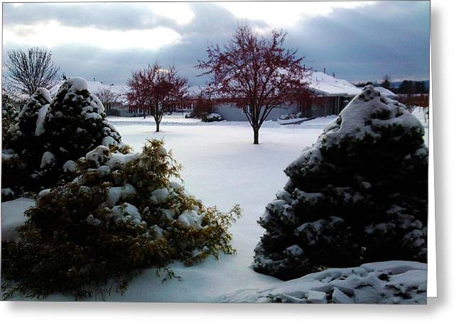 Winter Scene Pastels Greeting Cards - Scenic Winter Greeting Card by Jo-Ann Hayden