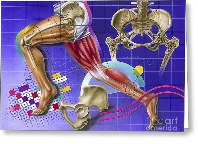 Abstract Movement Greeting Cards - Schematic Showing Hip And Leg Motion Greeting Card by TriFocal Communications