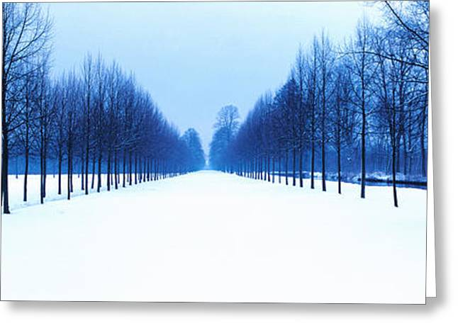 Bavaria Greeting Cards - Schleissheim Bavaria Germany Greeting Card by Panoramic Images