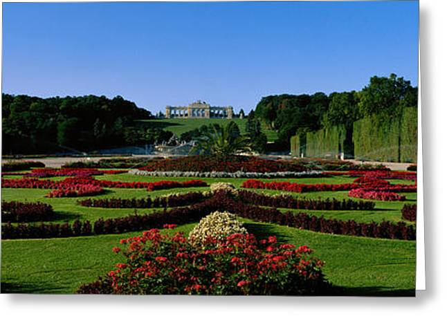 Garden Statuary Greeting Cards - Schonbrun Gardens Vienna Austria Greeting Card by Panoramic Images