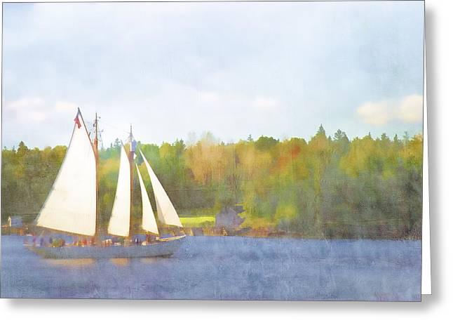 Blue Sailboats Greeting Cards - Schooner Castine Harbor Maine Greeting Card by Carol Leigh