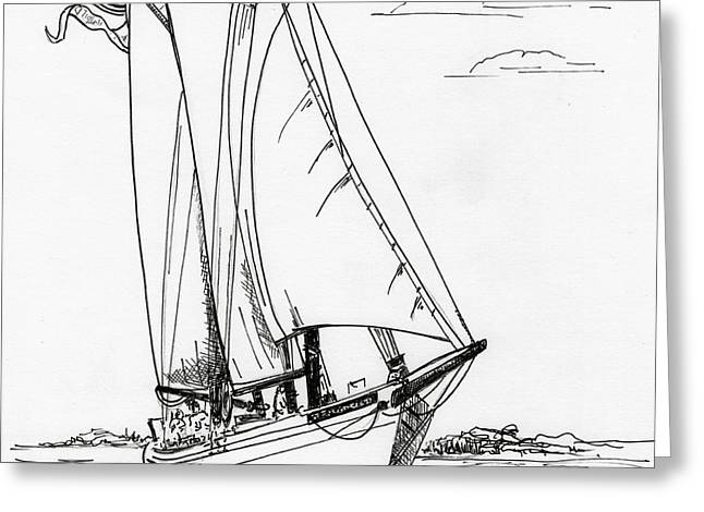 Wooden Ship Drawings Greeting Cards - Schooner on the Bay 2  Greeting Card by Nancy Patterson