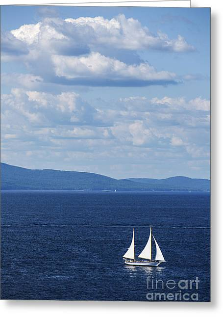 Blue Sailboat Greeting Cards - Schooner on the bay Greeting Card by Diane Diederich
