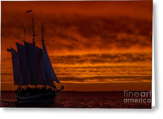 Schooners Greeting Cards - Schooner Sailboat Sunset Charleston South Carolina Greeting Card by Dustin K Ryan
