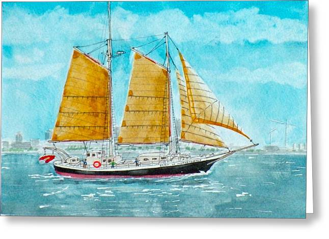 Tall Ships Drawings Greeting Cards - Schooner Spirit of Independence Greeting Card by Vic Delnore