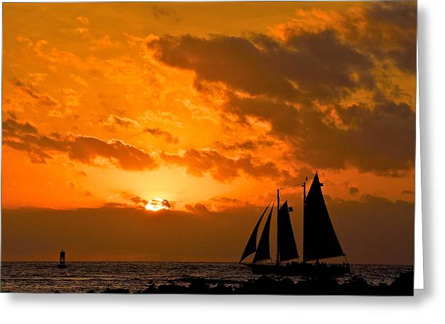 Yellow Sailboats Greeting Cards - Schooner Sunset Greeting Card by Vaughn Garner