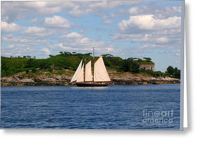 Ocean Scenes Greeting Cards - Schooner Greeting Card by Tom Prendergast